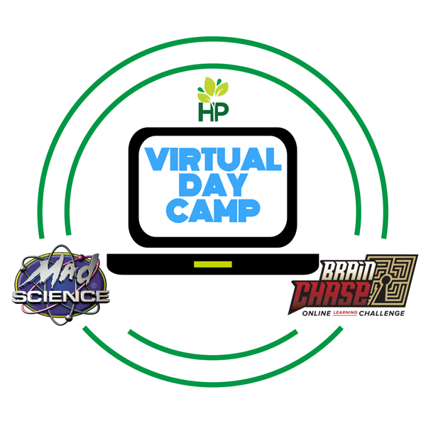 Virtual_Day_Camp_(Solid)